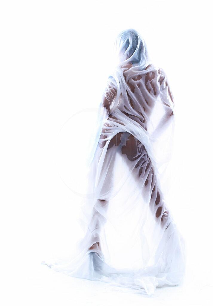 Whiteout I