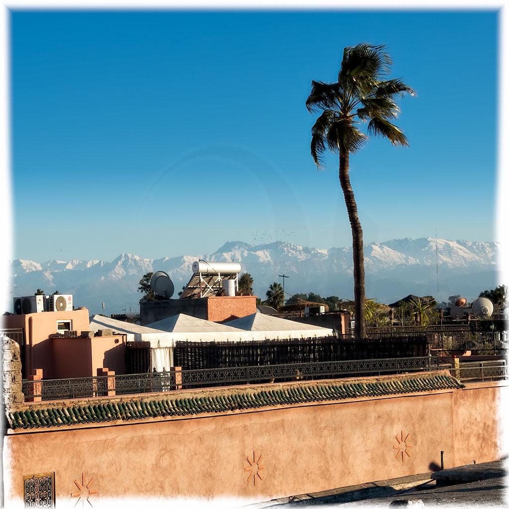 Typically Marrakesh